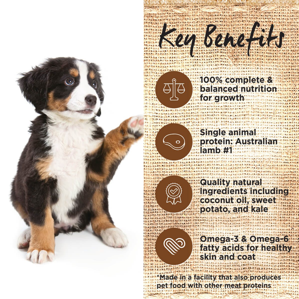 Ivory Coat | Dry GF Puppy Large Lamb with Coconut Oil 2kg | Grain Free Dry Dog Food | Left of pack