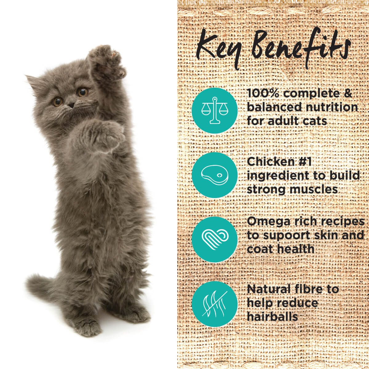 Ivory Coat | Cat Wet GF Kitten Chicken & Ocean Fish in Jelly 85g | Grain Free Wet Cat Food | Left of pack